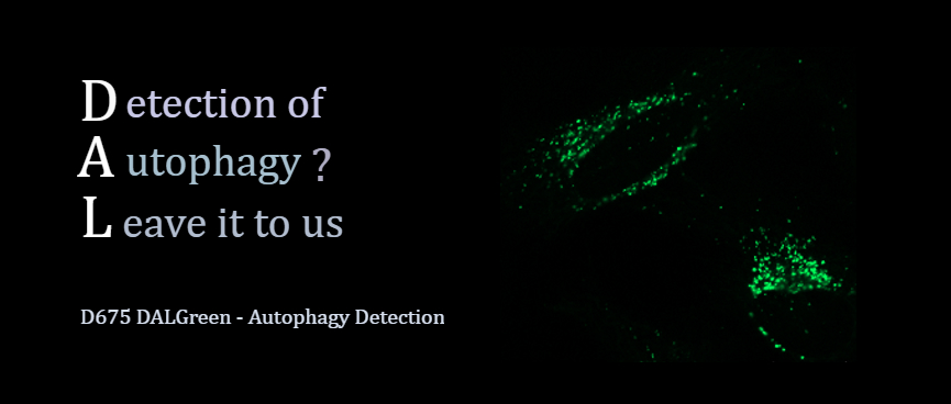 DALGreen - Autophagy Detection