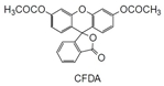 -Bacstain-CFDA Solution -Bacstain-CFDA solution, 5(6)-Carboxyfluorescein diacetate, DMSO solution [CAS: 79955-27-4]