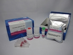 Peroxidase Labeling Kit-NH2