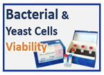 Microbial Viability Assay Kit-WST Microbial Viability Assay Kit-WST, Bacteria, Colony counting, Fungi, Yeast cell viabilty, XTT, CLSI method, Bacteria contamination, Agar plate, Fukuoka Industrial Technology Center,E.coli, B.subtilis, S.aureus, L.casei, S.cerevisiae, MRSA, Oxacillin, Clinical and Laboratory Standards Institute, Tadayuki Tsukatani