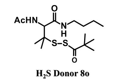 -sulfobiotics- h2s donor 8o sulfur biology, h2s, sulfane sulfur, persulfide,