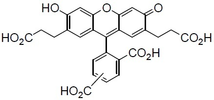 BCECF BCECF, 2,7-Bis(carboxyethyl)-4 or 5-carboxyfluorescein [CAS: 85138-49-4]