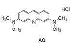 -Bacstain-AO Solution -Bacstain-AO solution, 3,6-Bis(dimethylamino)acridine hydrochloride, solution